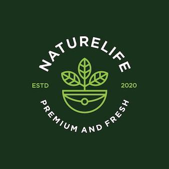 Logotipo da folha e ícone.