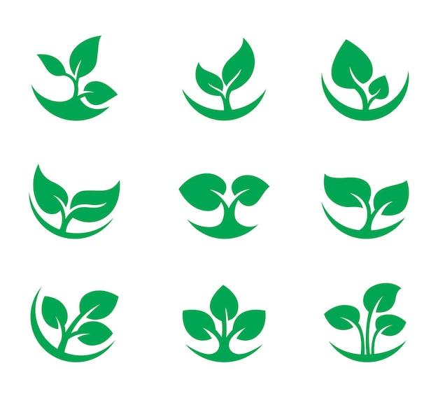 Logotipo da folha verde da natureza