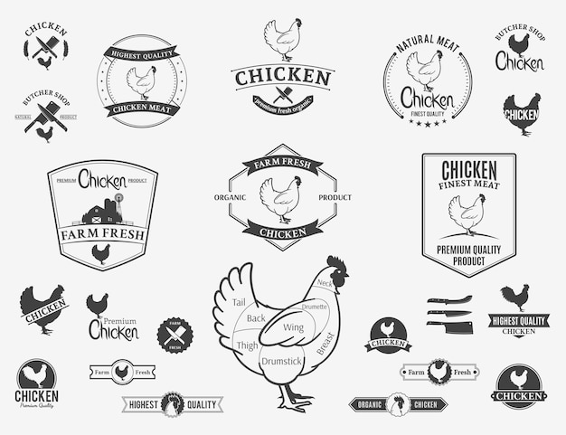 Logotipo da galinha rótulos gráficos e elementos de design