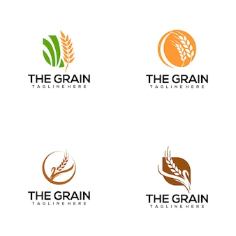 Logotipo da grão