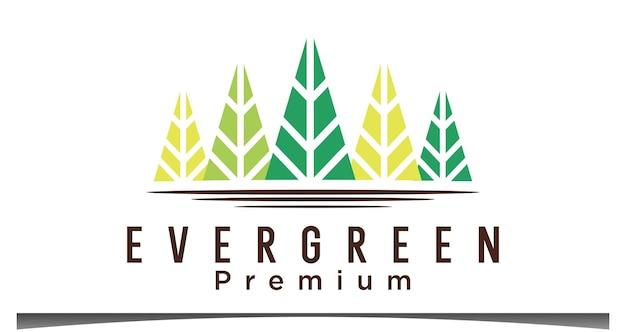 Logotipo das árvores evergreen pines spruce cedar