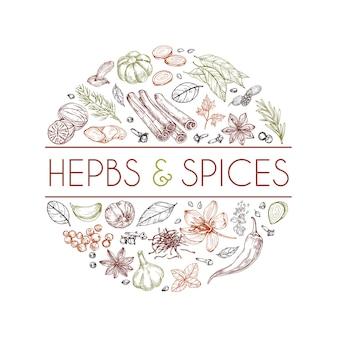 Logotipo de ervas e especiarias