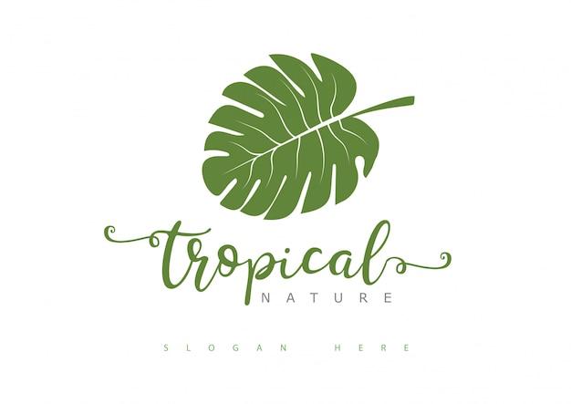 Logotipo de folha tropical