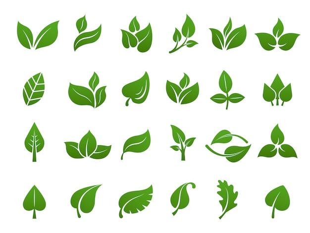 Logotipo de folhas verdes planta natureza eco jardim estilizado ícone vector coleção botânica