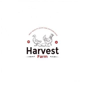 Logotipo de frango handdrawn pato vintage