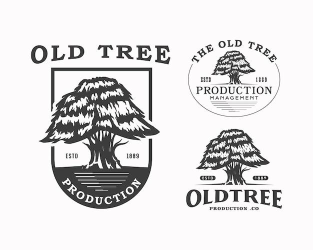 Logotipo de produção de árvore antiga silhueta de árvore emblema modelo de design de logotipo