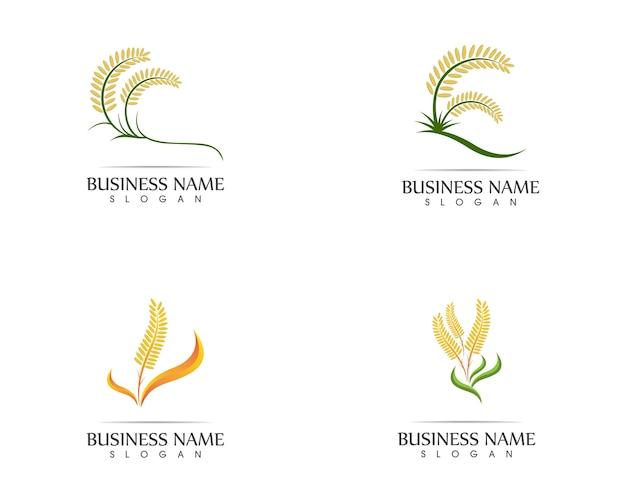 Logotipo de sinal de ícone de trigo de arroz