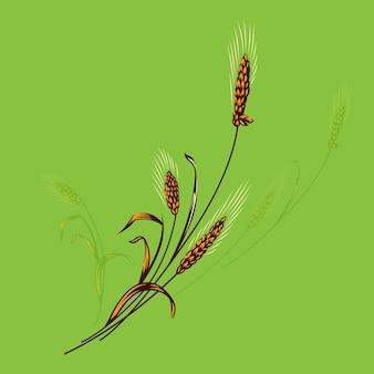 Logotipo de trigo de agricultura
