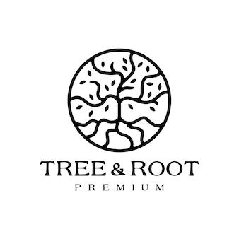 Logotipo do círculo redondo da folha da raiz da árvore