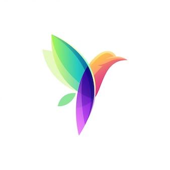 Logotipo do pássaro colorido