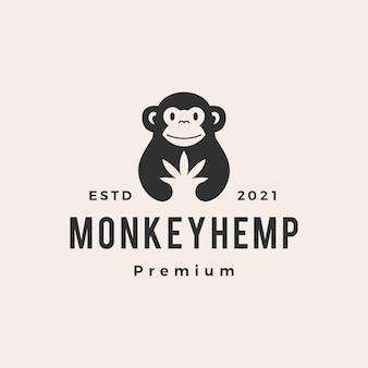 Logotipo vintage de macaco maconha hipster
