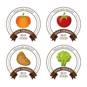 Logotipos coloridos com batata e brócolis de maçã de abóbora
