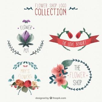 Logotipos da aguarela para lojas de flores