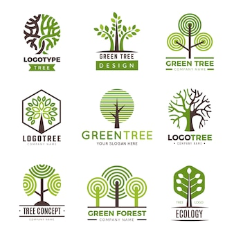 Logotipos de árvores. eco verde símbolos madeira estilizada árvores plantas vetor logotipo