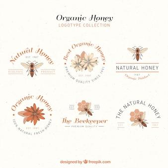 Logotipos mel elegantes, estilo desenhado mão
