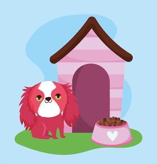 Loja de animais, cachorro peludo com comida e desenho de animal doméstico