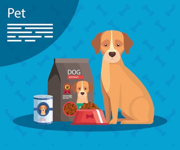 Loja de animais com cachorro e modelo de comida de cachorro