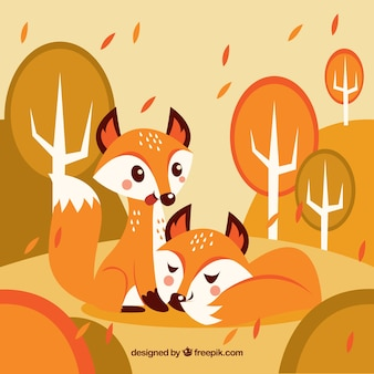 Lovely couple of foxes no outono