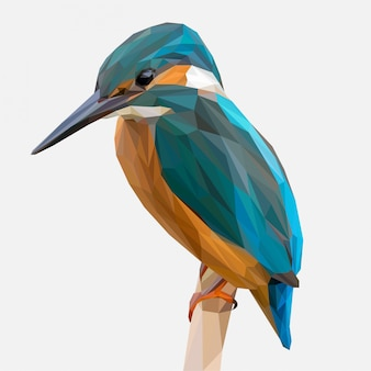 Lowpoly de kingfisher pássaro no galho