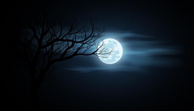 Lua cheia no céu nublado à noite
