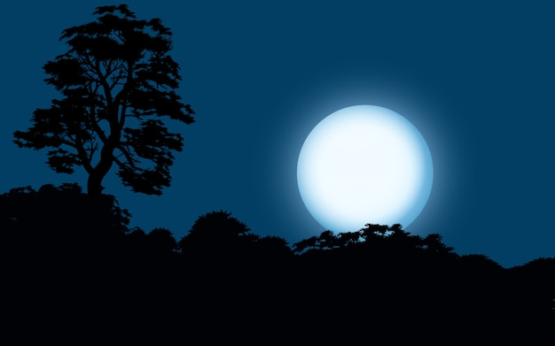 Lua cheia sobre a floresta
