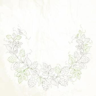 Lúpulo com folhas isoladas no branco