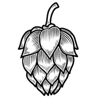 Lúpulo de cerveja em gravura de estilo isolado no fundo branco. elemento de design de logotipo, etiqueta, sinal, cartaz, folheto. ilustração vetorial