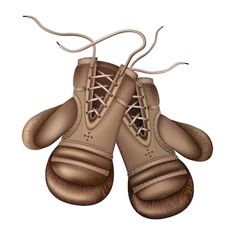 Luvas de boxe vintage