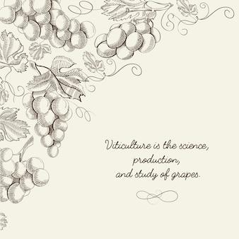 Luz abstrata da baga com cachos de uvas e inscrição no estilo desenhado à mão