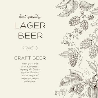 Luz abstrata floral com texto e ramos de lúpulo à base de ervas de cerveja em estilo desenhado à mão