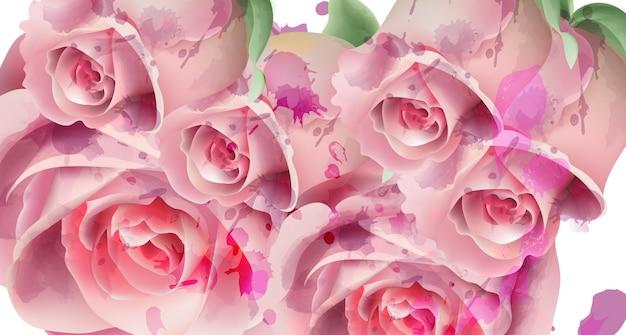 Luz rosa rosas aquarela cartão de plano de fundo