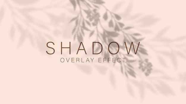 Luz suave e transparente e sombras de ramos, plantas, folhagens e folhas.