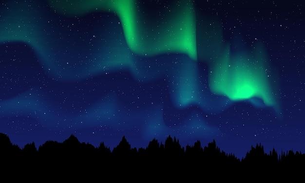 Luzes do norte realistas, céu noturno e incrível ilustração vetorial de luzes polares
