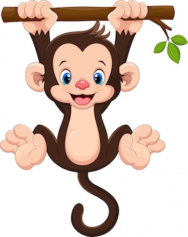 Macaco bebê fofo pendurado na árvore