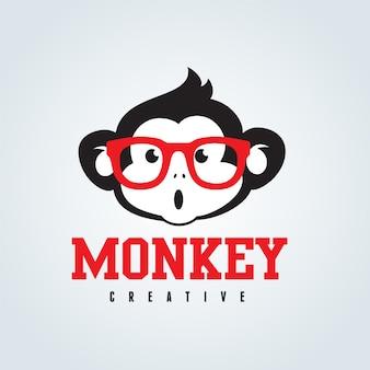 Macaco bonito com óculos