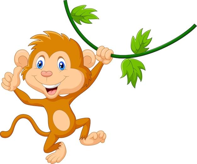 Macaco bonito pendurado dando o polegar para cima