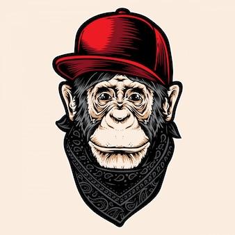 Macaco com bonés
