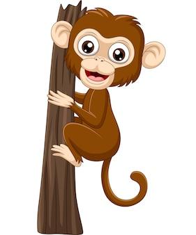 Macaco de bebê cartoon subindo galho de árvore