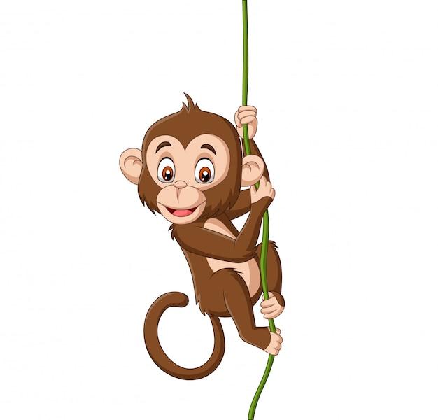 Macaco de bebê dos desenhos animados, pendurado em um galho de árvore