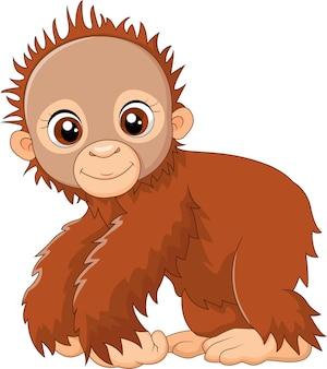 Macaco de bebê dos desenhos animados