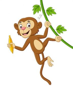 Macaco de desenho animado pendurado e detém banana em galho de árvore