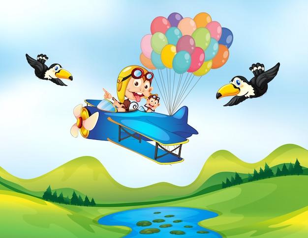 Macaco e helicóptero