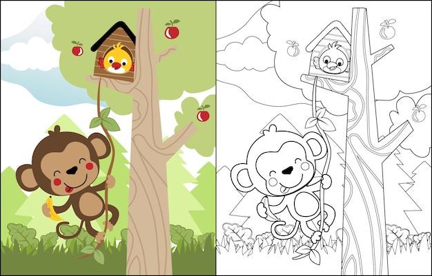 Macaco engraçado dos desenhos animados e pássaro na árvore