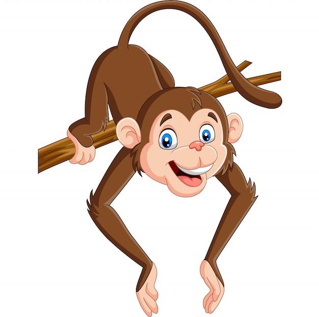 Macaco engraçado dos desenhos animados em um galho de árvore