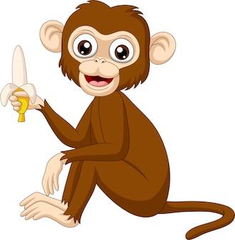 Macaco engraçado dos desenhos animados, segurando a banana
