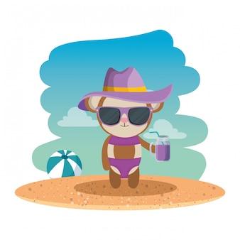Macaco fofo com chapéu de verão e coquetel na praia