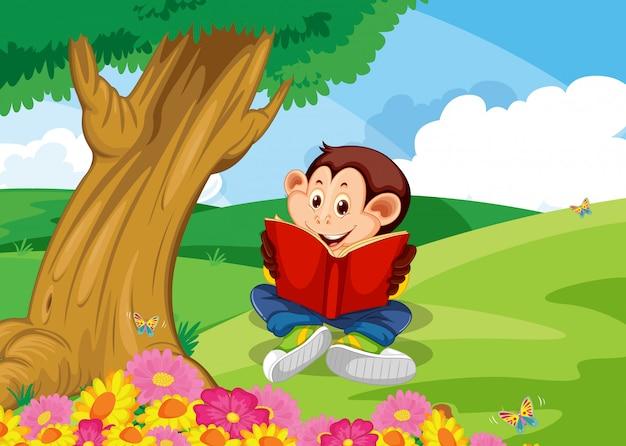 Macaco lendo livro no jardim