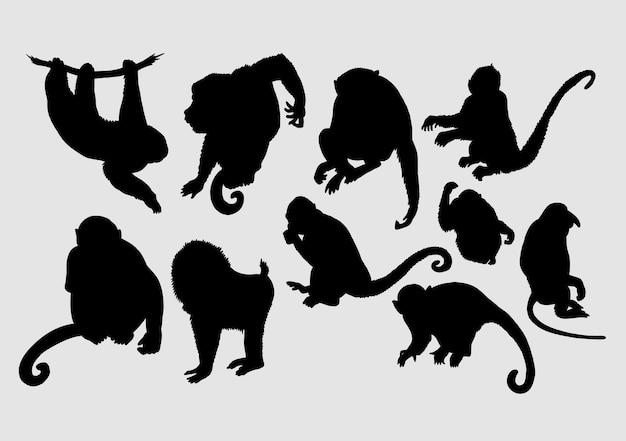 Macaco, macaco, babuíno, silhueta de animais selvagens