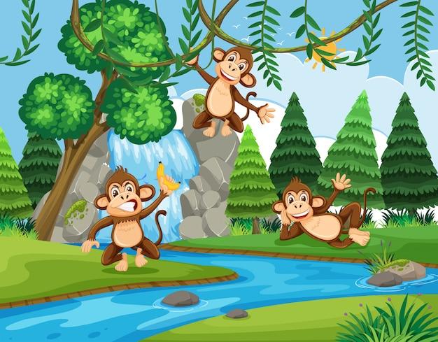 Macaco na floresta