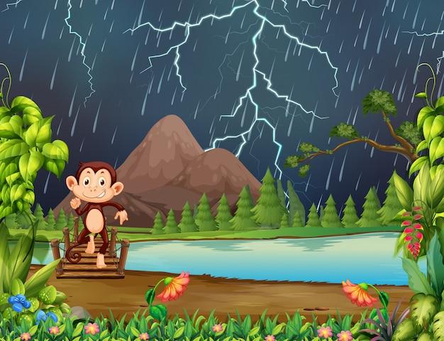 Macaco na selva com relâmpago